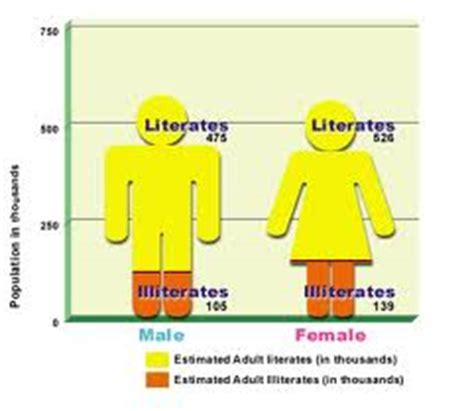 Essay on literacy rate